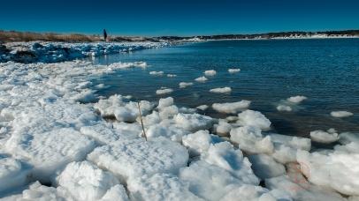 Wellfleet, Indian Neck, 2014 Winter