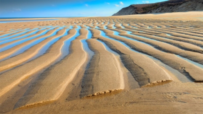 Cape Cod Beach, Sand Ripples at Low Tide